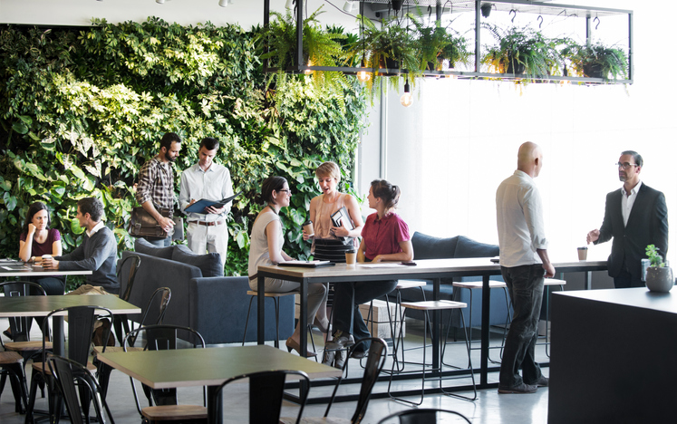 Groups of people meeting around the tables and couches of a trendy office building with a vertical green garden wall